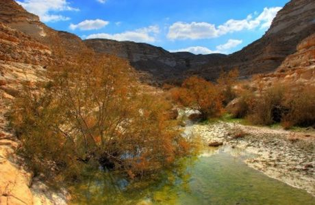 Israel National Trail tours